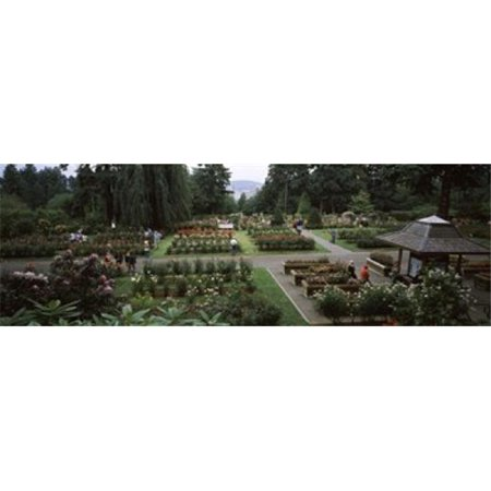 Tourists in a rose garden  International Rose Test Garden  Washington Park  Portland  Multnomah County  Oregon  USA Poster Print by  - 36 x 12