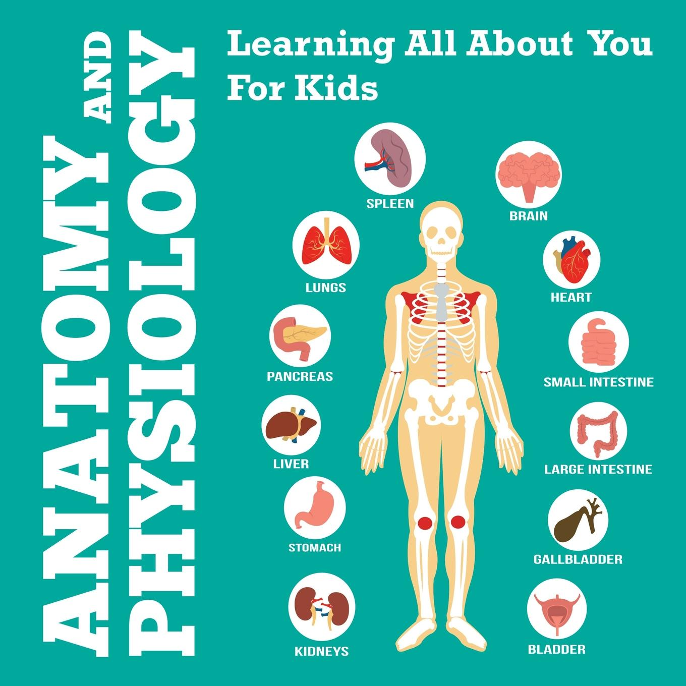 Anatomy and Physiology : Learning All about You for Kids