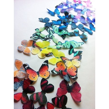 Edible Butterflies ? - Small Assorted Set of 24 - Cake and Cupcake Toppers, - Simple Halloween Cake Decorations