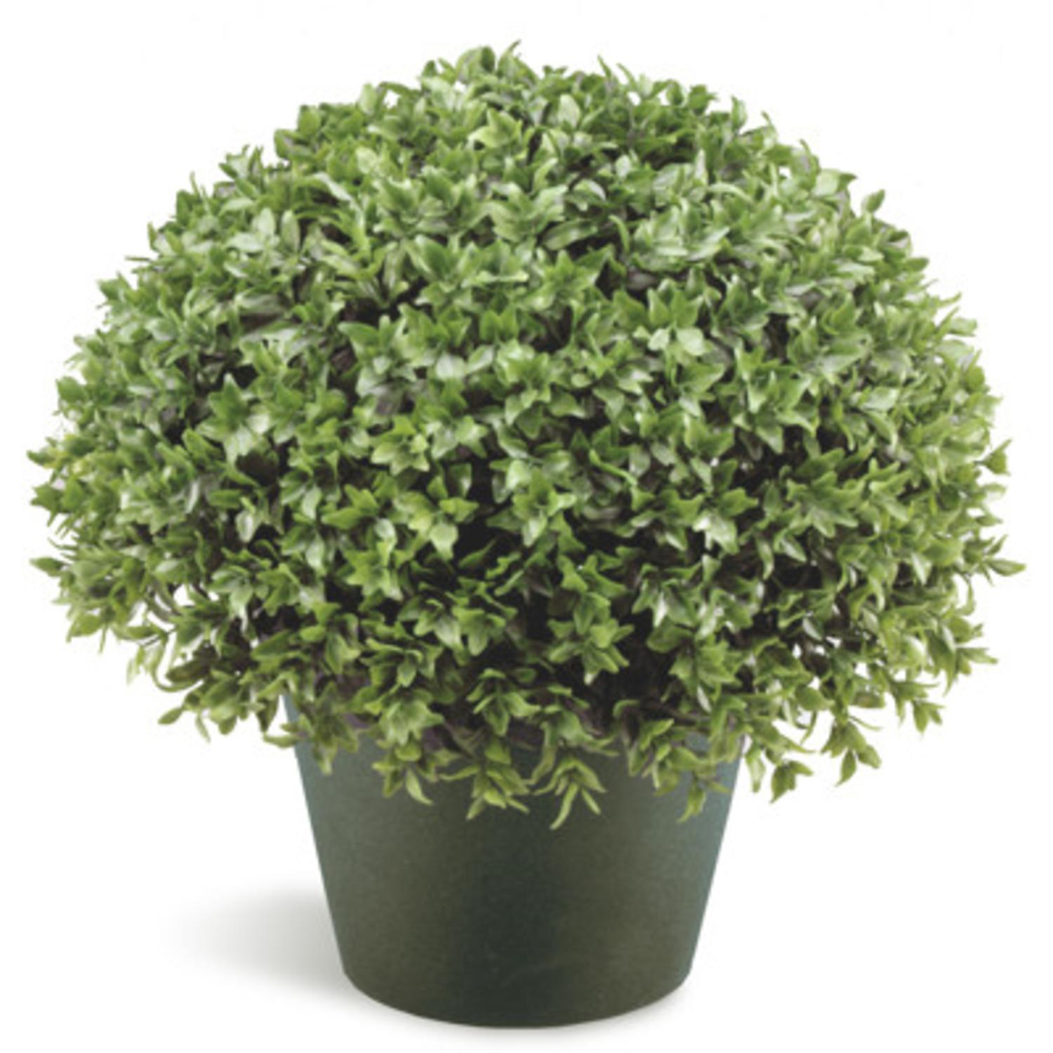 "13"" Potted Artificial Japanese Holly Bush"