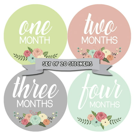Baby Monthly Milestone Stickers - First Year Set of Baby Girl Month Stickers for Photo Keepsakes - Shower Gift - Set of 20