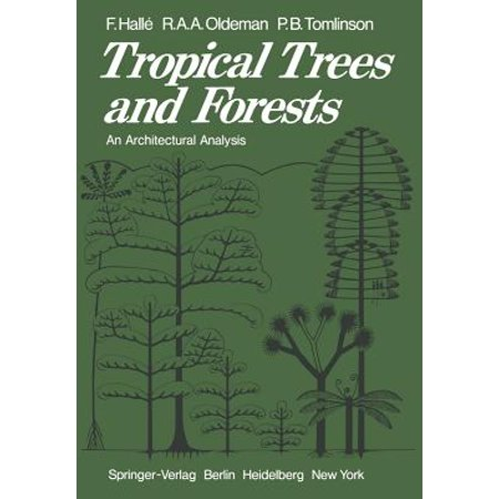 Tropical Trees and Forests : An Architectural