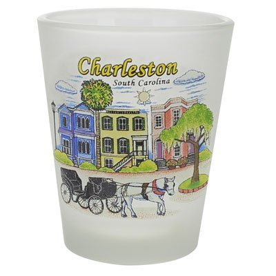 Charleston South Carolina Houses Frosted Shot -