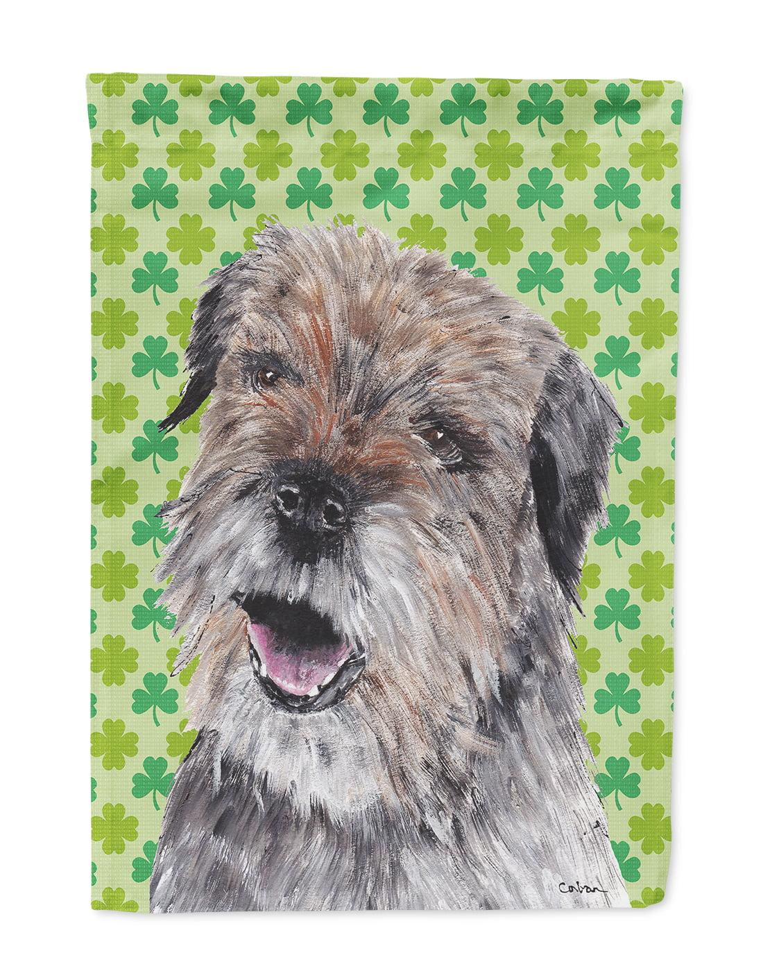 Border Terrier St Patrick