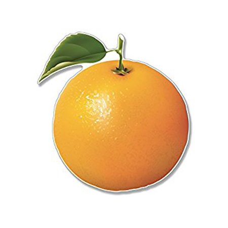 Orange Fruit Shaped Sticker Decal (funny juice florida scrapbooking) Size: 4 x 4 inch