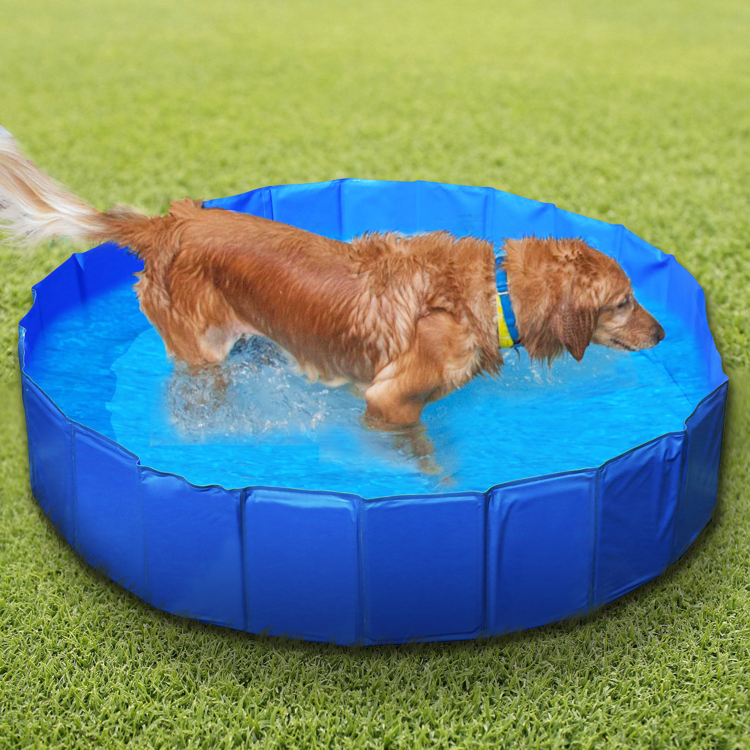 Imountek 63 Inch Foldable Portable Collapsible Foldable Pet Dog Swimming Pool Portable Pvc Bathtub Pool For Cats Rabbits Walmart Com Walmart Com