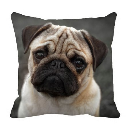 PHFZK Animal Pillow Case, Portrait of Beautiful Pug Puppy Pillowcase Throw Pillow Cushion Cover Two Sides Size 18x18 inches ()