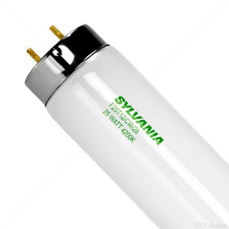 Bulb Fluor Cwhite 28In T12 25W