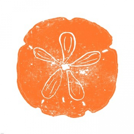 Orange Sand Dollar Poster Print by Veruca Salt (34 x 34)