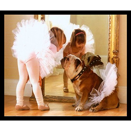 Framed Reluctant Dancer 16X20 Art Print Poster Ballerina Dog Dance Ballet Mirror Cute Bulldog