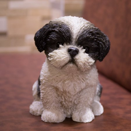 HI-LINE GIFT LTD. BLACK & WHITE SHIH TZU - Black Shih Tzu