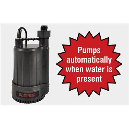 Franklin Electric 14942735 Automatic Utility Pump