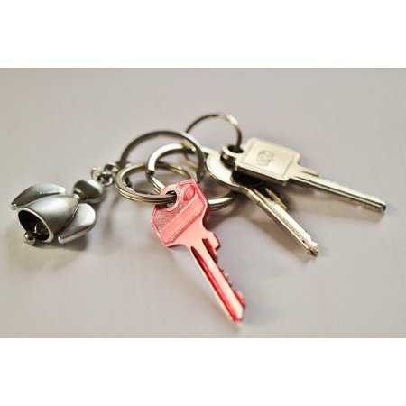 LAMINATED POSTER House Keys Shut Off Key Door Key Security Keychain Poster Print 24 x (Best Security Door For House)