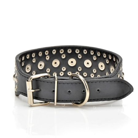 Pet Kingdom Leather Studded Large Dog Collar Pet Collar Black,L