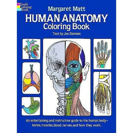 Human Anatomy Coloring Book (Paperback) - Walmart.com