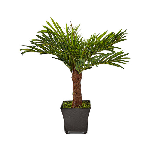 Silk Flower Depot Areca Palm in metal Container