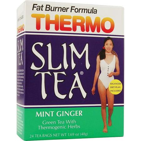 Hobe Labs Thermo Slim Tea  Green Tea, 24 ea
