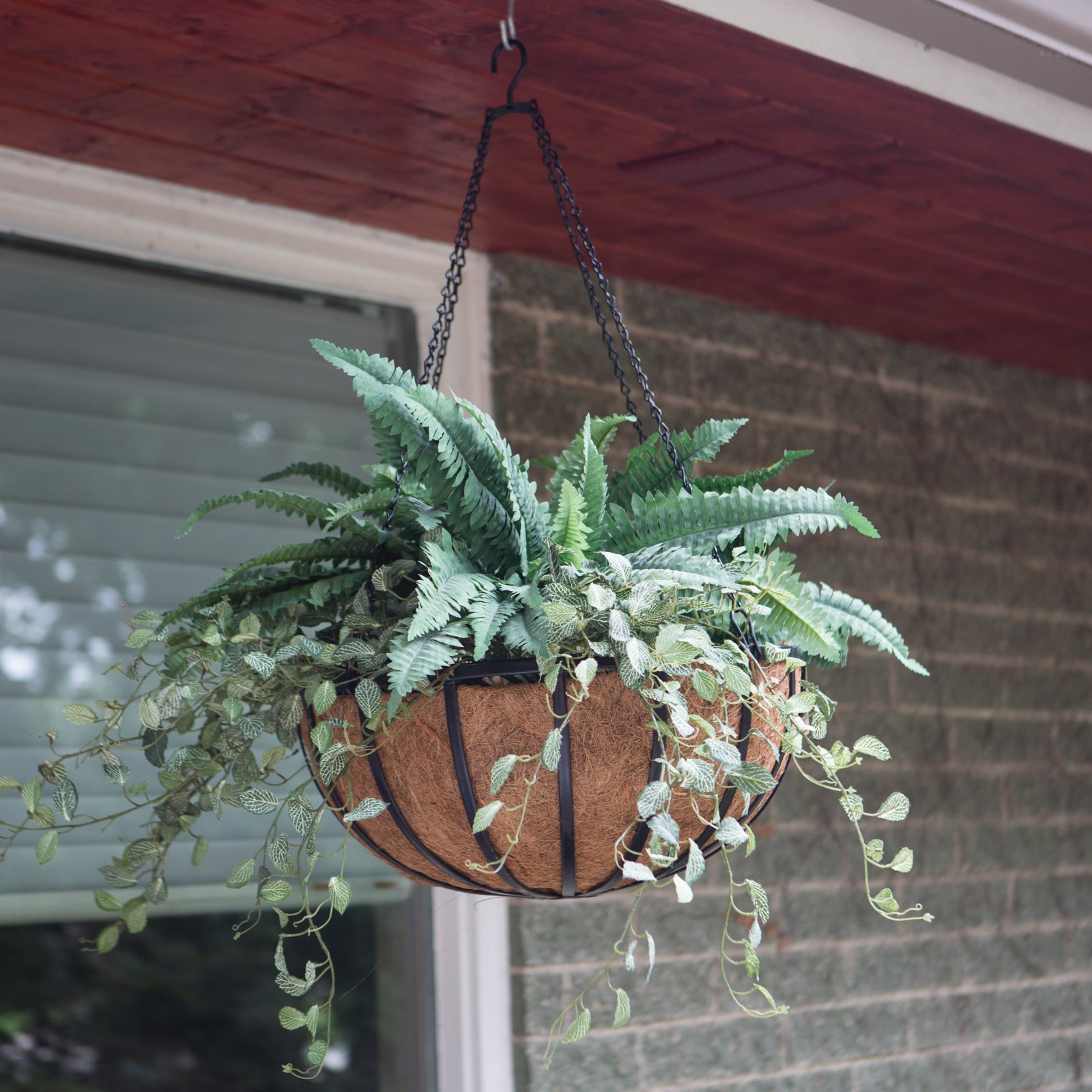 Border Concepts Traditional Hanging Basket with Liner