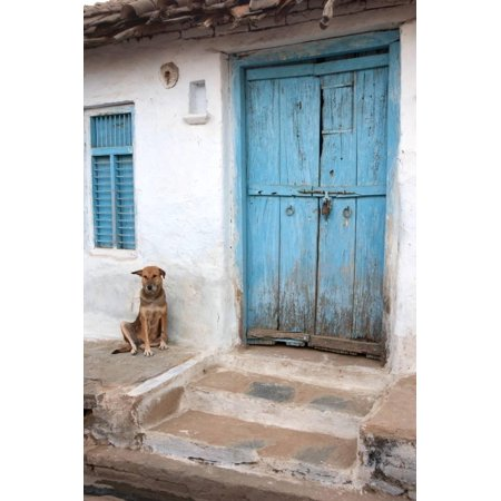 Dog resting outside a house, Jojawar, Rajasthan, India. Print Wall Art By Inger