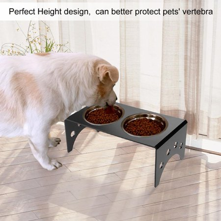 Dilwe Elevated Acrylic Stand 2 Bowls Raised Pet Feeder For Cats And Dogs Food Water Twin