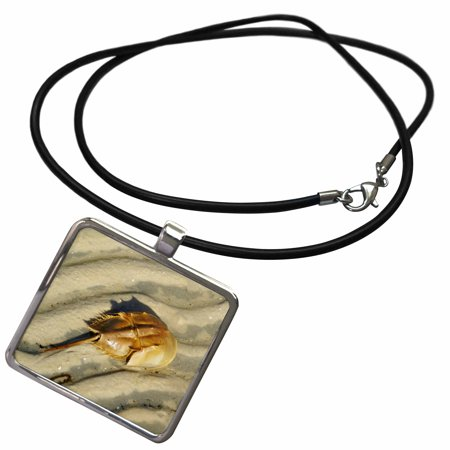 3dRose Tan Horseshoe Crab On Beach - Necklace with Pendant (ncl_35257_1) (Horseshoe Crab Necklace)