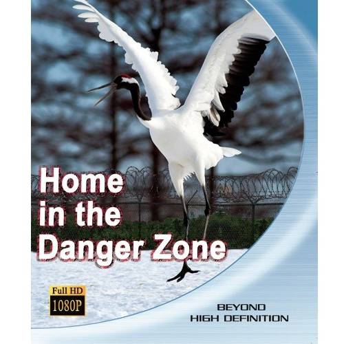 Home In The Danger Zone (Blu-ray)