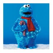 "28"" Cookie Monster"