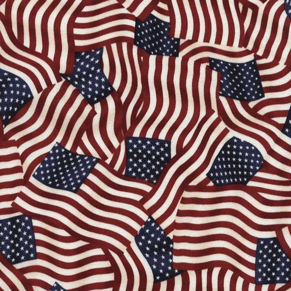 Timeless Treasures Novelty Patriotic Flag Collage