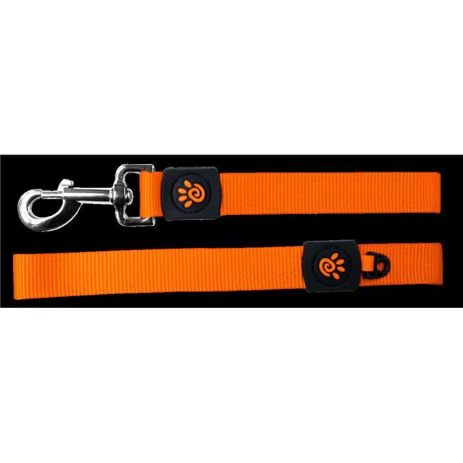 Doco DCS2072-04S 6 ft. Easy-Snap Nylon Dog Leash with Neoprene Handle, Pink - Small