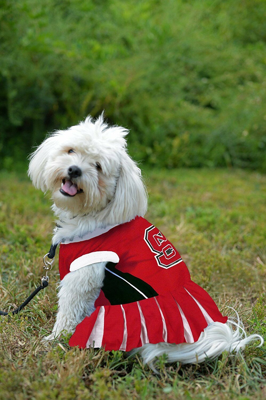 Tiny NHL Carolina Hurricanes Dog Cheerleader Dress Red