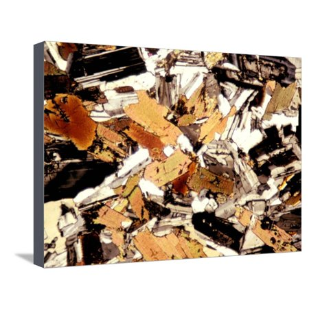 Albert Crystal - Mica Diorite Thin Section Showing Component Crystals, Polarized View Stretched Canvas Print Wall Art By Albert Copley