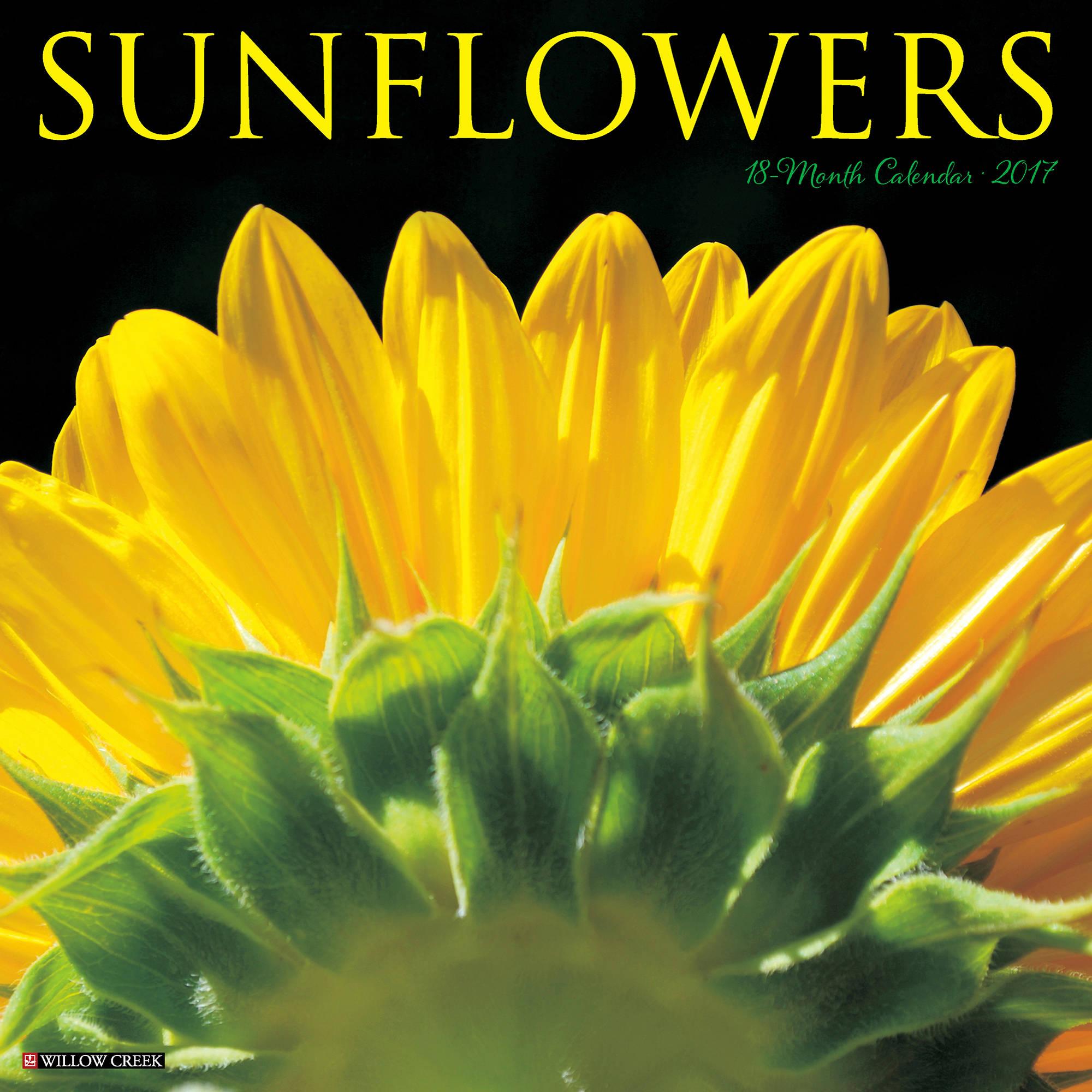 2017 Sunflowers Wall Calendar 42039