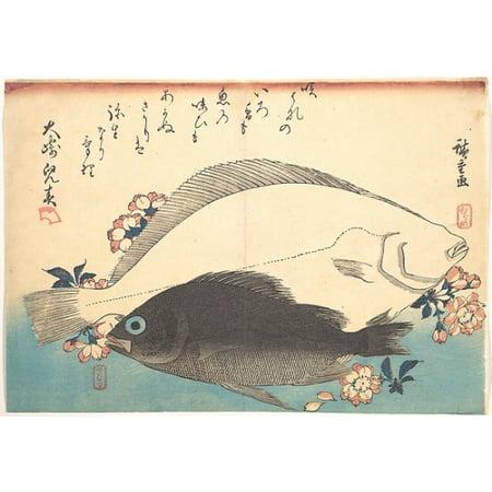 """Hirame and Mebaru Fish with Cherry Blossoms from the series Uozukushi (Every Variety of Fish) Poster Print by Utagawa Hiroshige (Japanese Tokyo (Edo) 1797  """"1858 Tokyo (Edo)) (18 x"""