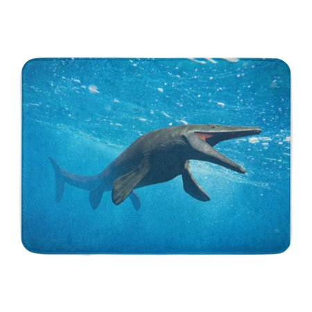 SIDONKU Mosasaurus Huge Ocean Lizard Extinct Mosasaur Between 70 and 66 Million Years Doormat Floor Rug Bath Mat 30x18 inch (Mullion Doors)