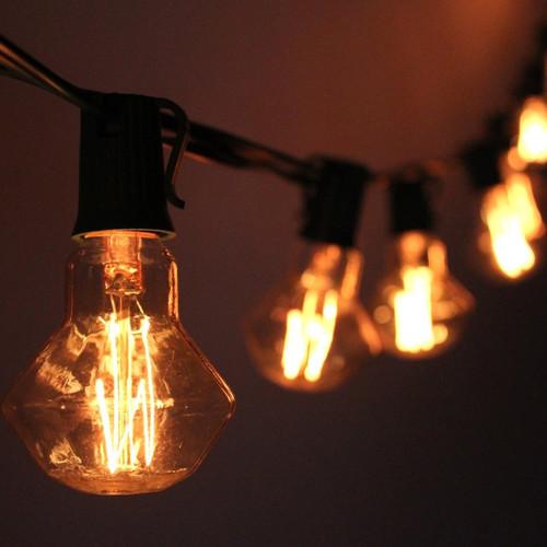 The Paper Lantern Store 10-Light 10 ft. Globe String Lights