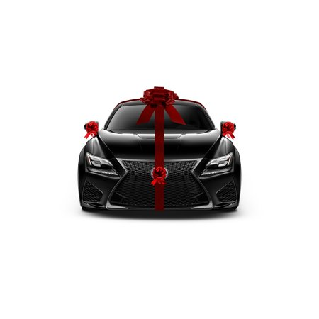 Giant Metallic Red Car Bow New Car Gift Wrap Kit Lot Decoration Deluxe Set