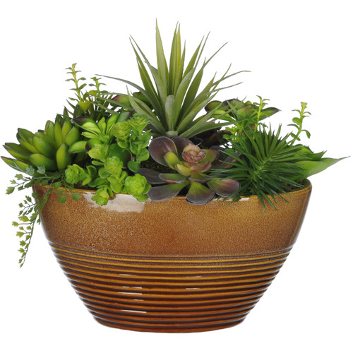 House of Silk Flowers Inc. Artificial Succulent Desk Top Plant in Decorative Vase