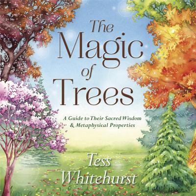 The Magic of Trees (Paperback)
