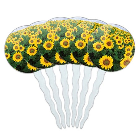 Sunflower Cupcake Toppers (Field of Sunflowers Cupcake Picks Toppers - Set of)