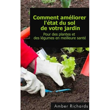 Comment améliorer l'état du sol de votre jardin Pour des plantes et des légumes en meilleure santé - eBook