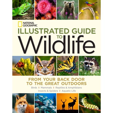 National Geographic Illustrated Guide to Wildlife : From Your Back Door to the Great (Computer Has Locked The Door To Outdoor Games)