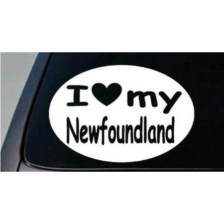 I LOVE MY NEWFOUNDLAND DOG WATER SWIM 6