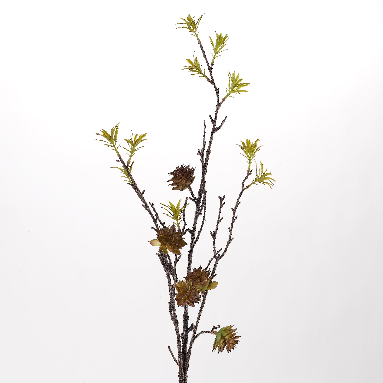 """D&W Silks - 41"""" Protea Cactus - Set of 3"""