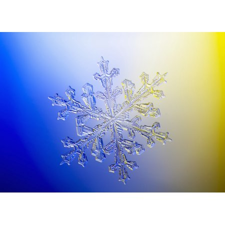 Photo-microscope view of a real snowflake showing the classic 6-sided star shape Canvas Art - Marion Owen  Design Pics (18 x 13)