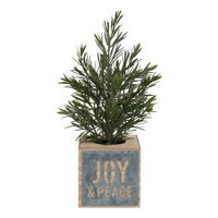 Holiday Time Rosemary Tree in Die Cut Joy Box Christmas Decoration, 14""