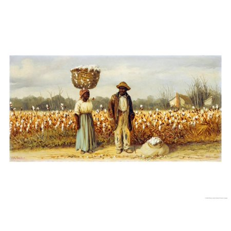 The Cotton Pickers Print Wall Art By William Aiken - Wall Walkers