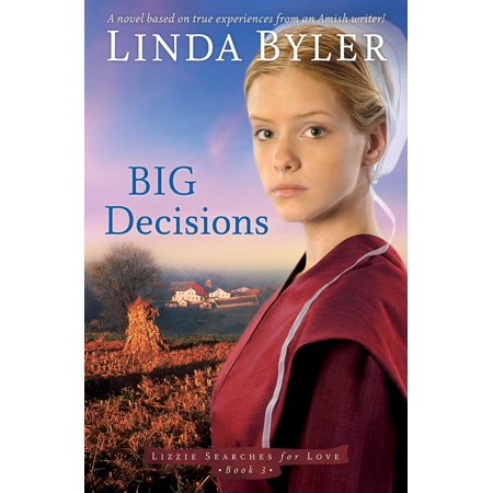 Big Decisions : A Novel Based On True Experiences From An Amish