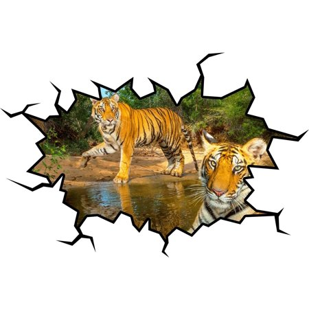 VWAQ Tigers Wall Decal Hole In The Wall Jungle Animal Sticker Mural VWAQ-WC19 (18