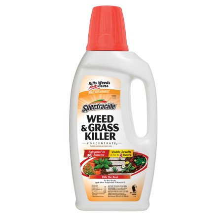 Spectracide Weed & Grass Killer Concentrate, 32-fl (Best Weed And Grass Killer)