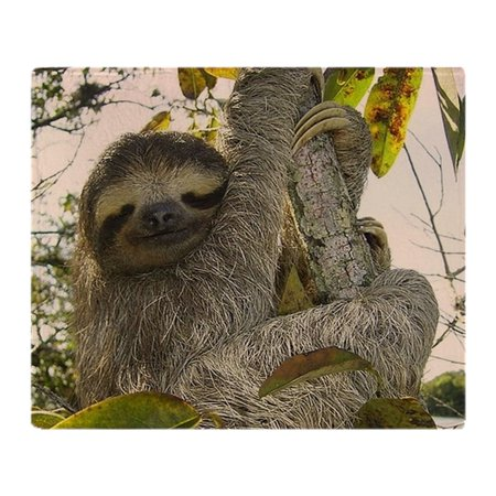 Fleece Picnic Stadium Blanket - CafePress - Sloth - Soft Fleece Throw Blanket, 50